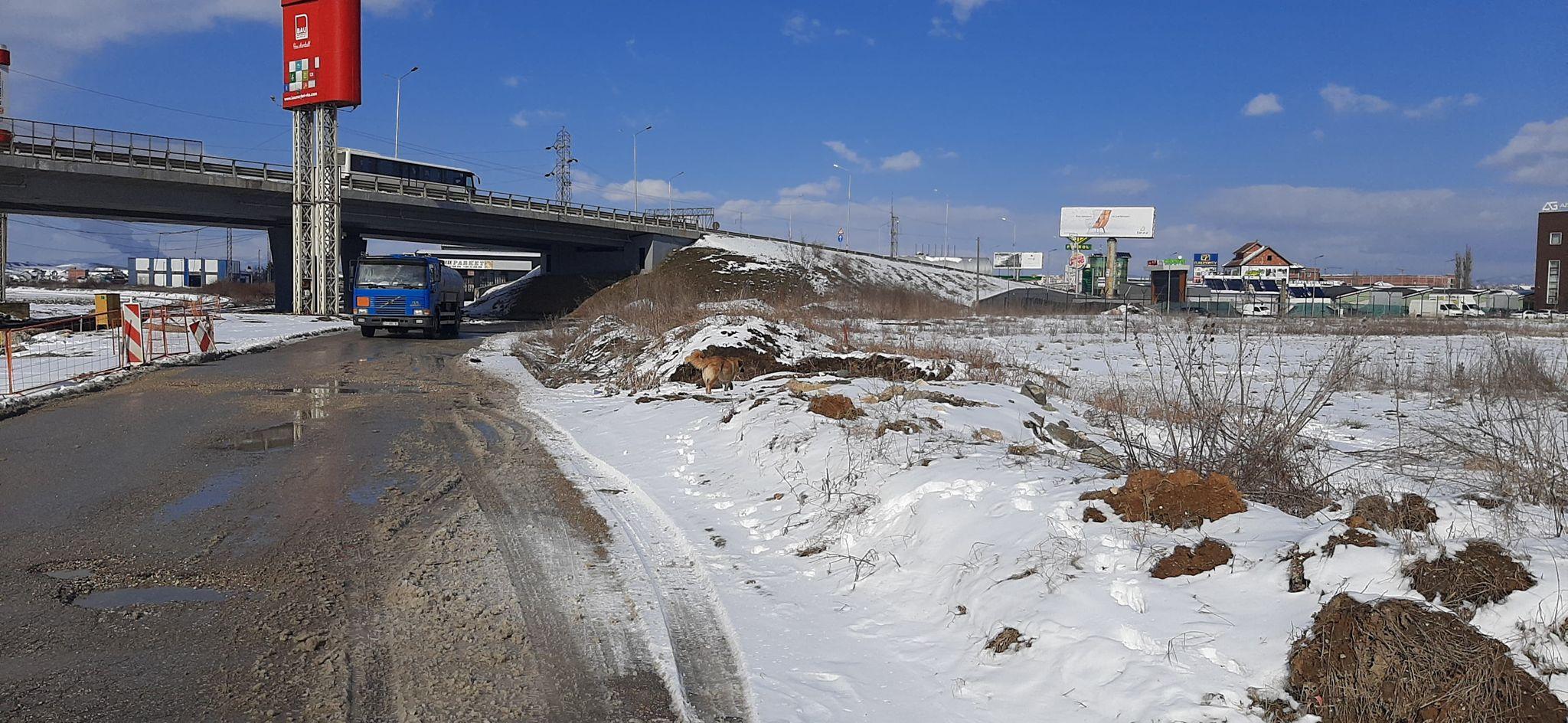 Shitet 28 Ari Truall ne Fushë Kosovë